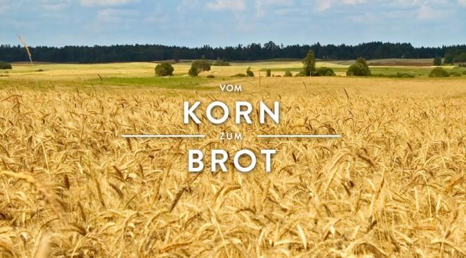 Vom Korn zum Brot – regionale Wertschöpfung